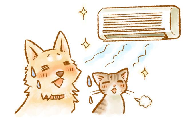 夏はエアコンつけっぱなし!犬猫と暮らすときの冷暖房